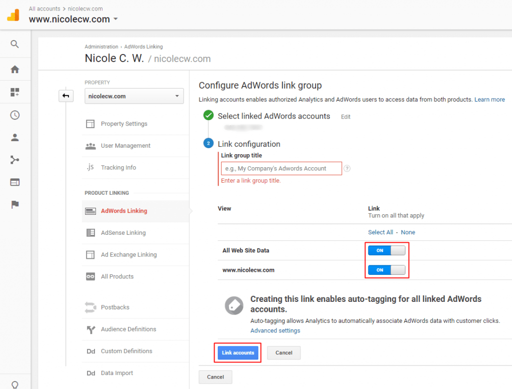 Google Analytics - AdWords Linking - Configure AdWords Link Group