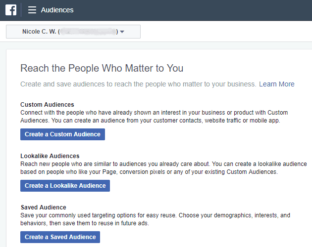 Facebook - Ads Manager - Audiences