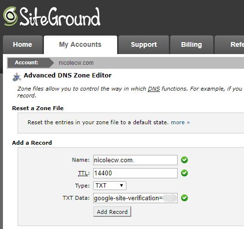 SiteGround - Advanced DNS Zone Editor Add TXT Record