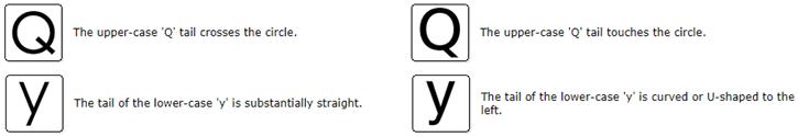 Tail - Q y
