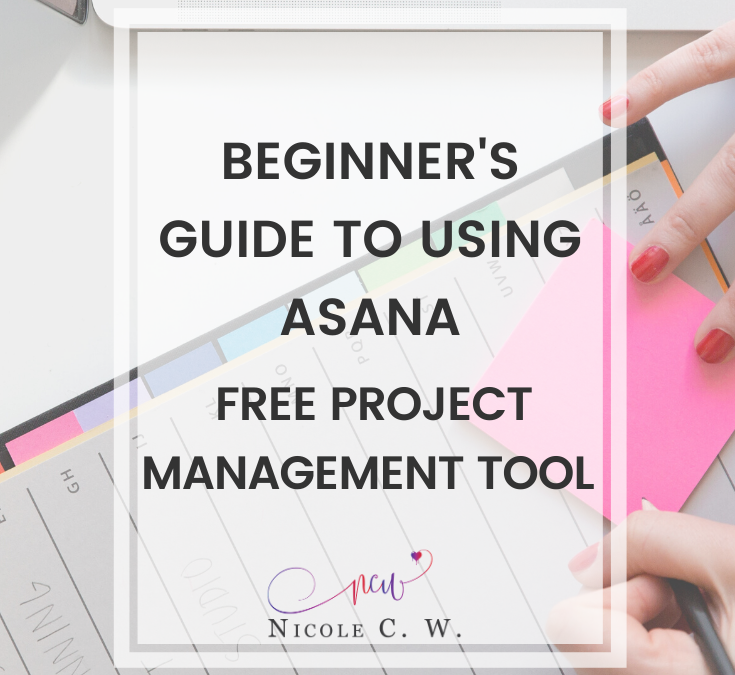 Beginner's Guide To Using Asana, Free Project Management Tool