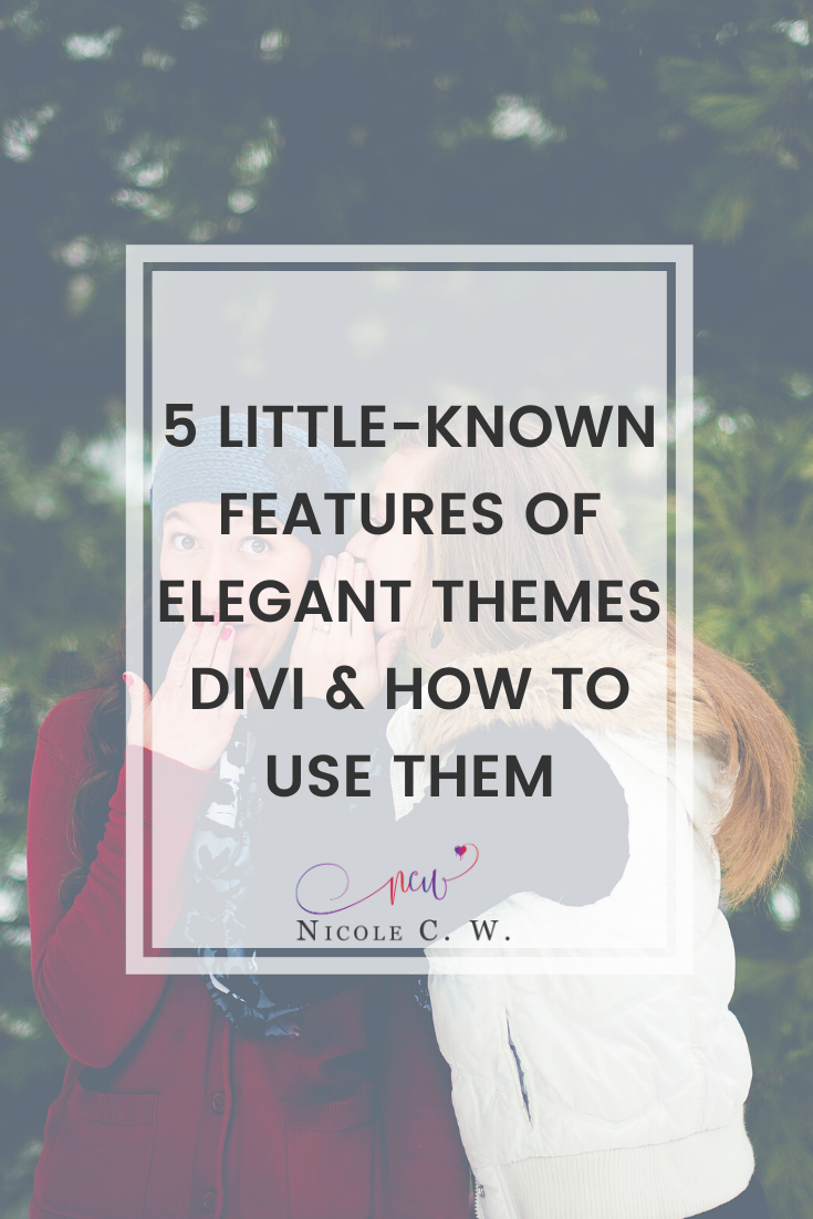 [Entrepreneurship Tips] 5 Little-Known Features Of Elegant Themes Divi & How To Use Them