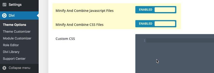Elegant Themes Divi - Theme Options - Minify Combine Javascript CSS
