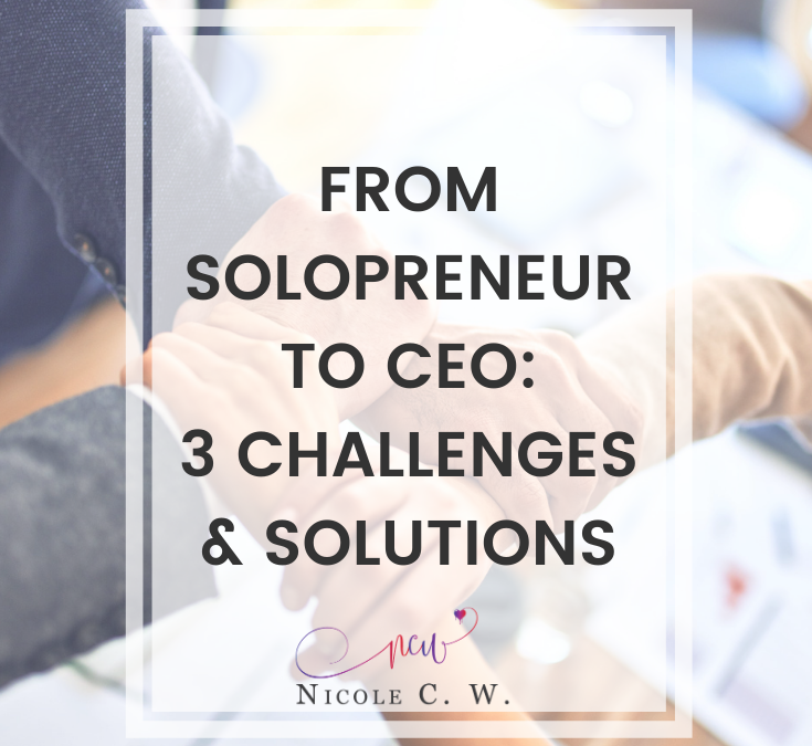 From Solopreneur To CEO: 3 Challenges & Solutions