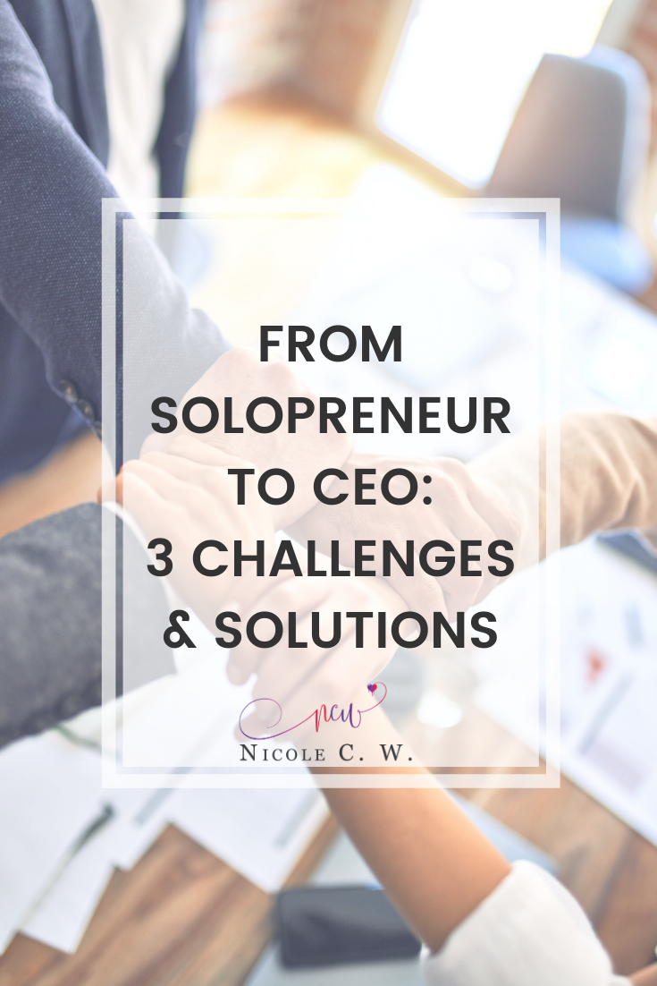 [Entrepreneurship Tips] From Solopreneur To CEO - 3 Challenges & Solutions